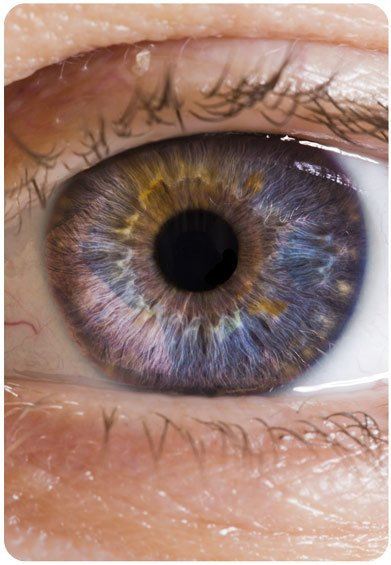 macular-degeneration-eye-surgery-scotland
